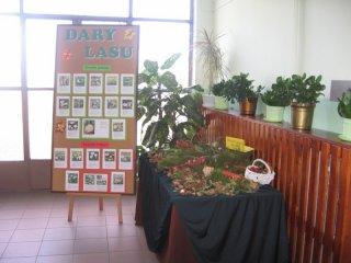 wystawa-dary-lasu
